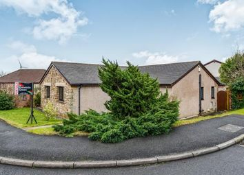 Thumbnail 4 bed bungalow for sale in The Spinney, Heysham, Morecambe, Lancashire