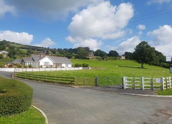 Thumbnail 3 bed detached bungalow for sale in Capel Bangor, Aberystwyth