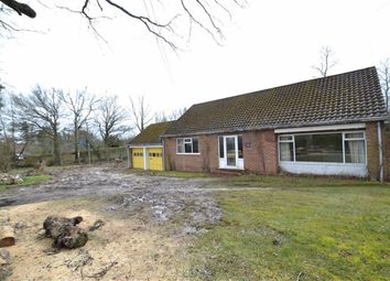 Thumbnail 2 bed detached bungalow for sale in Galley Lane, Headley, Berkshire