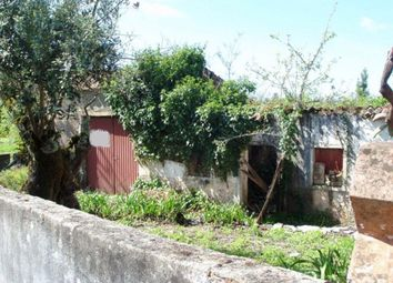 Thumbnail Property for sale in Ansiao, Central Portugal, Portugal