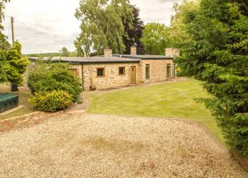 Thumbnail 4 bed detached bungalow for sale in Haverhill Road, Horseheath, Cambridge