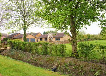 Thumbnail 5 bedroom detached bungalow for sale in St. Neots Road, Cambridge
