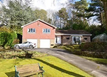 Thumbnail 4 bed property for sale in Fielden Road, Crowborough