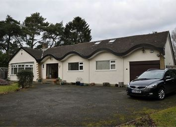 Thumbnail 5 bed detached bungalow for sale in Meadowfield Road, Stocksfield