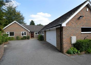 Thumbnail 4 bed detached bungalow for sale in Spout Hill, Rotherfield