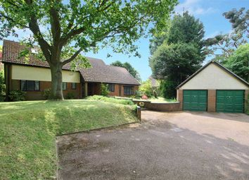 Thumbnail 5 bed detached bungalow for sale in Westerfield Road, Westerfield, Ipswich, Suffolk