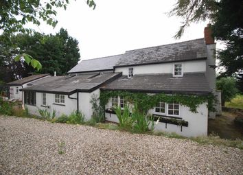Thumbnail 4 bed cottage for sale in Stokes Lane, Stoke Lacy, Bromyard