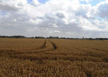 Thumbnail Commercial property for sale in Land At Garden Lane, Wisbech St Mary, Cambridgeshire