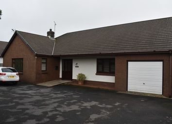 Thumbnail 3 bed bungalow to rent in Bowls Road, Cardigan