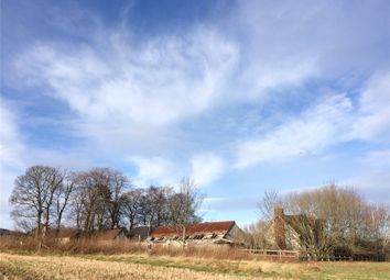 Thumbnail Land for sale in Millbank Cottage And Croft, Sauchen, Inverurie, Aberdeenshire