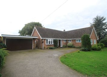 Thumbnail 4 bedroom detached bungalow for sale in Bradfield St George, Bury St Edmunds, Suffolk
