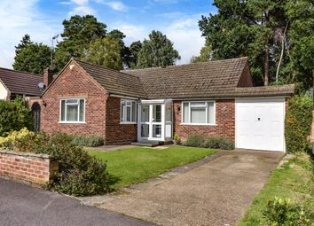 Thumbnail 3 bedroom detached bungalow for sale in Lightwater, Surrey