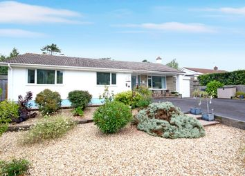 3 bed detached bungalow for sale in Moor Lane, Torquay TQ2