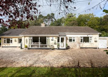 Thumbnail 4 bed detached bungalow for sale in Bridge Place Road, Camerton, Bath