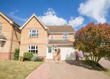 Thumbnail 4 bed detached house for sale in Ash Rise, Halstead
