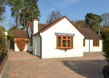Thumbnail 4 bed detached bungalow for sale in Lightwater, Surrey