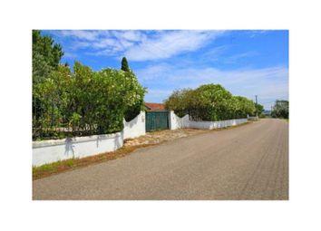 Thumbnail Detached house for sale in Famalva S/N Na, Casével E Vaqueiros, Santarém