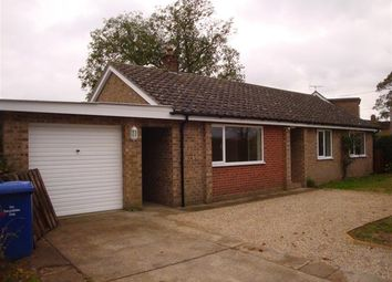 Thumbnail 3 bed bungalow to rent in The Street, Herringswell, Bury St. Edmunds