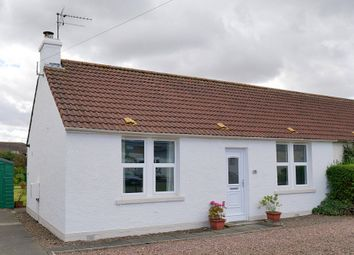 Thumbnail 2 bed semi-detached house to rent in Hamilton Road, Gullane, East Lothian