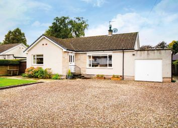 Thumbnail 3 bed detached bungalow for sale in James Street, Stanley, Perthshire