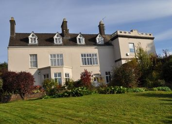 Thumbnail 2 bed flat to rent in High Street, Newnham On Severn, Glos