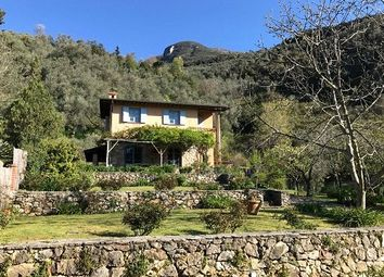 Thumbnail 3 bed property for sale in Tuscan Farmhouse, Camaiore, Tuscany