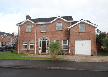 Thumbnail 5 bed detached house for sale in Berry Lane, Newtownabbey