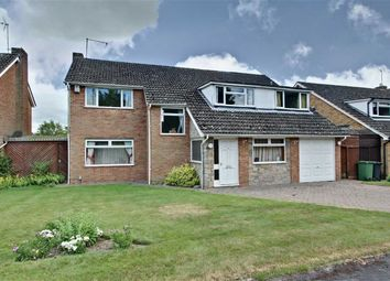Thumbnail 5 bed detached house for sale in Okeford Drive, Tring