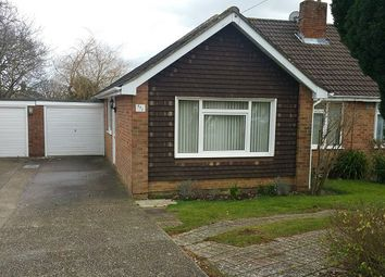 Thumbnail 3 bed bungalow to rent in Cherrytree Avenue, Cowplain