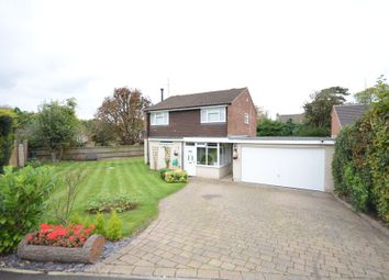 Thumbnail 4 bed detached house to rent in Almond Close, Old Basing, Basingstoke