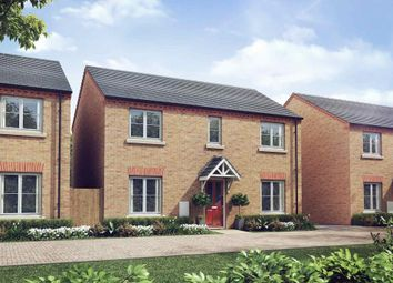 "Thumbnail 4 bedroom detached house for sale in ""Whitford - Plot 119"" at Warsop Lane, Rainworth, Mansfield"
