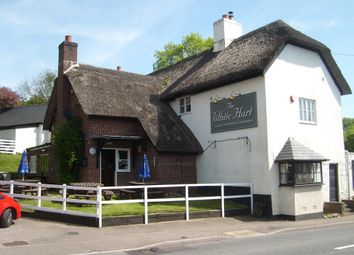 Thumbnail Pub/bar for sale in The White Hart, Trafalgar Way, Wilmington, Honiton, Devon