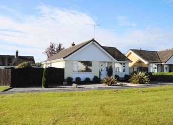 Thumbnail 3 bed bungalow to rent in Pennington Road, West Moors, Ferndown