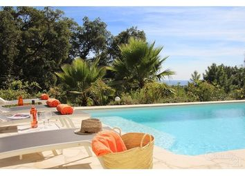 Thumbnail 4 bed property for sale in 83420, La Croix Valmer, Fr