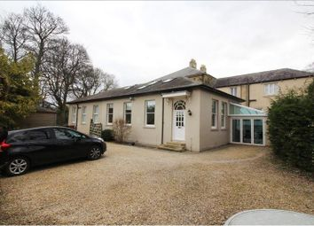 Thumbnail 4 bed semi-detached house to rent in Usworth Hall, Washington