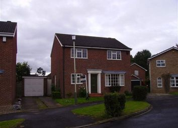 Thumbnail 4 bedroom detached house to rent in Rossway, Darlington