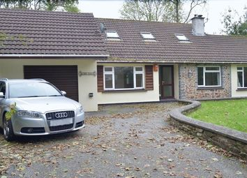 Thumbnail 3 bed detached bungalow for sale in Barripper, Camborne