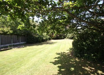 Thumbnail 3 bed semi-detached bungalow for sale in Rochford Hall Close, Rochford