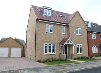 Thumbnail 5 bedroom detached house to rent in Stamford Drive, Dunton Fields, Basildon, Essex