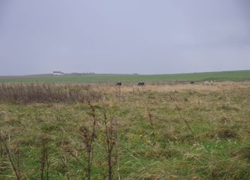 Land for sale in Longhope, Stromness KW16