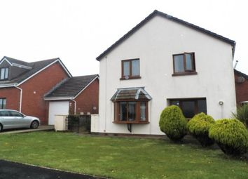 Thumbnail 4 bed property to rent in Ardent Close, Steynton, Milford Haven