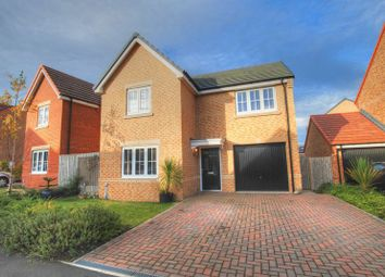Thumbnail 3 bed detached house for sale in Orchid Place, Portland Wynd, Blyth