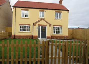 Thumbnail 4 bedroom detached house to rent in West End, March