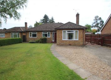Thumbnail 3 bed detached bungalow for sale in Mill Road, Blofield, Norwich