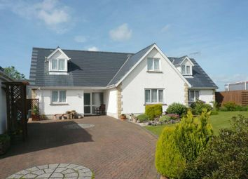 Thumbnail 4 bed detached house for sale in Maes Y Dderwen, Llanddewi Velfrey, Narberth