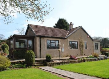 Thumbnail 3 bed detached bungalow for sale in Neds Top, Oldcroft, Lydney