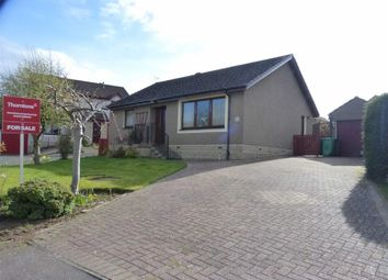 Thumbnail 3 bedroom bungalow for sale in Robertson Road, Cupar, Fife