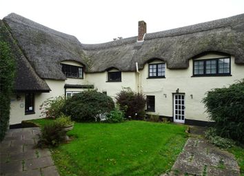 Thumbnail 11 bed detached house for sale in Huxham, Exeter