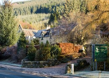 Thumbnail Hotel/guest house for sale in Strathyre, By Callander