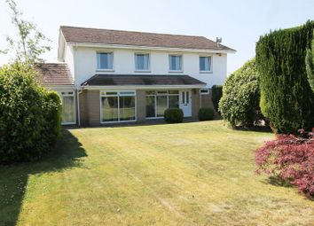 Thumbnail 4 bed detached house for sale in Penygroes, Groesfaen